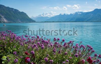 Фотообои это фото пейзажной горы, Швейцария