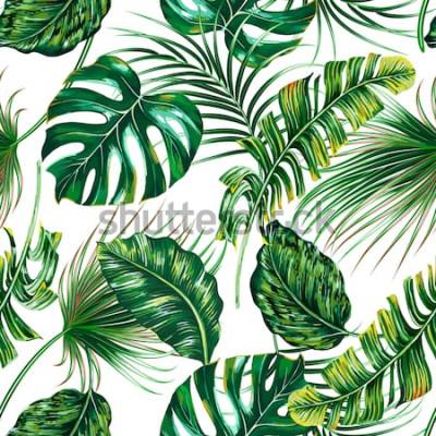 Фотообои Тропические пальмовые листья, монстера, джунгли лист вектор бесшовные цветочные летние узор фона