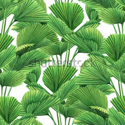 Фотообои Кокос акварели крася, лист ладони, зеленые листья безшовная предпосылка картины. Лист акварели нарисованная рукой иллюстрация тропических экзотических печатает для обоев, ткани делает по образцу джунг