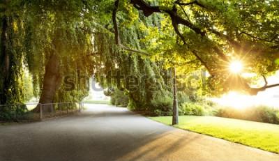 Фотообои Прогулка в красивом городском парке