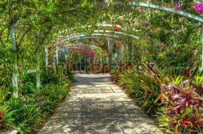 Фотообои Арка покрыта яркими красочными цветами в ботаническом саду в Неаполе, штат Флорида