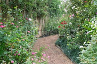 Фотообои Проход в ботаническом розарии, стоковое фото