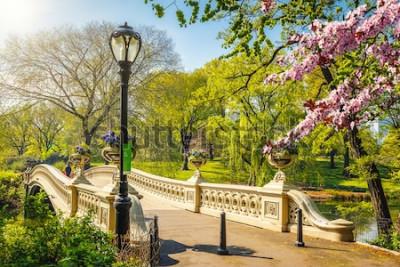 Фотообои Носовой мост в центральном парке в солнечный весенний день, Нью-Йорк