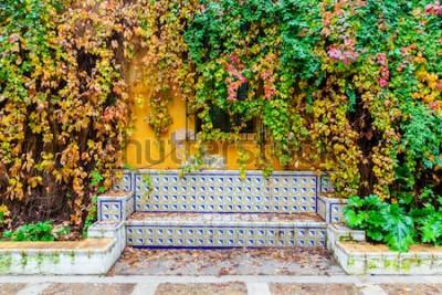 Фотообои живописное изображение скамейки с традиционной плиткой перед стеной, покрытой виноградной лозой