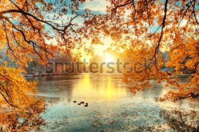 Фотообои Красивые покрашенные деревья с озером в осени, фотографией ландшафта. Поздняя осень и ранний зимний период. Открытый и природа.