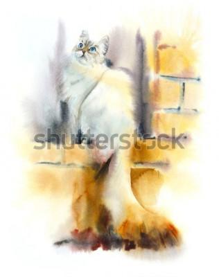 Фотообои Siberian cat sits on the window. Watercolor hand drawn illustration