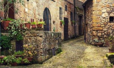 Фотообои Узкие улицы средневекового древнего туф города Sorano с зелеными растениями и булыжник, путешествия Италия фона