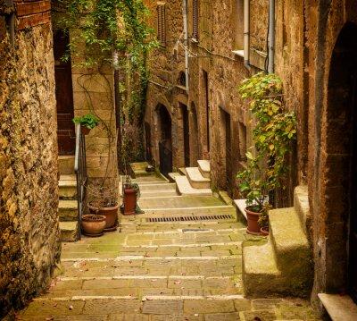 Фотообои Узкие улицы средневекового города туфа Питиглиано с зелеными растениями и булыжником лестнице, путешествия Италия старинные фон