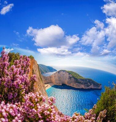 Фотообои пляж Навагио с кораблекрушения и цветы на фоне голубого неба на острове Закинф, Греция