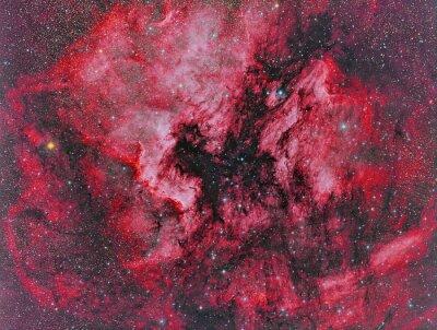 Фотообои NGC 7000 Туманность Северная Америка визуализируют с помощью телескопа и научной ПЗС-камеры