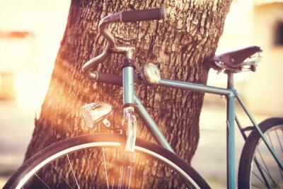 Фотообои Старый велосипед прислонившись к дереву