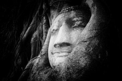 Фотообои Мирное и спокойное лицо Будды высечены на камне древнего