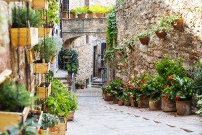 Фотообои Фото с Orton эффектом улицы украшен растениями и цветами в историческом итальянском городе Спелло (Умбрия, Италия)