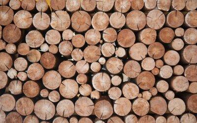 Фотообои Pile of wood logs stumps for winter