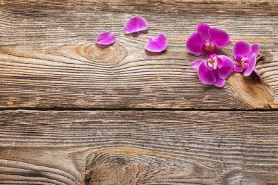 Фотообои Розовые цветки орхидеи на деревянном фоне