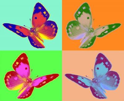 Фотообои поп-арт Colias бабочки