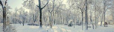 Фотообои Общественный парк из Европы с деревьев и ветвей, покрытых снегом и льдом, скамейки, фонарный столб, пейзаж.