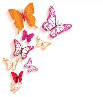 Фотообои Реальные красочные бабочки, изолированных на весну