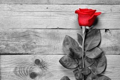 Фотообои Красная роза на черно-белом фоне деревянных