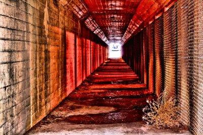 Фотообои красный туннель