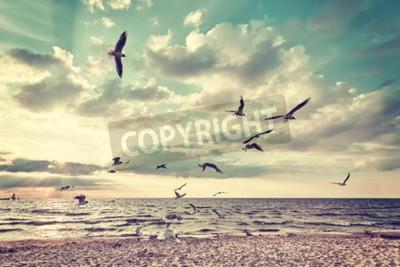Фотообои Ретро стилизованный пляж с летающих птиц на закате.