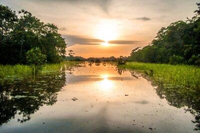 Фотообои Река в тропических лесов Амазонки в сумерках, Перу, Южной Америке