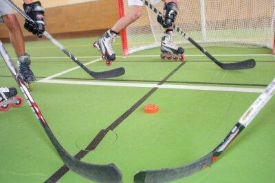 Фотообои Хоккей на роликах
