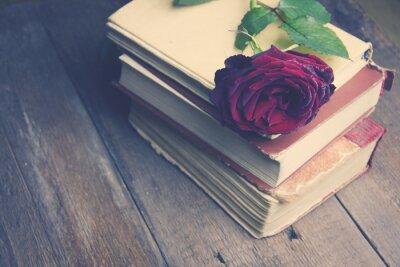 Фотообои выросли на книгах
