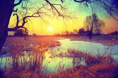 Фотообои Сельский пейзаж.