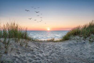 Фотообои Sand dunes on the beach at sunset