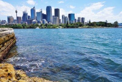 Фотообои Живописный вид на центр города Сидней горизонта от гавани
