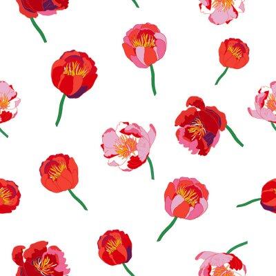 Фотообои Бесшовные цветочные фон. Изолированные красные цветы на белом фоне. Векторная иллюстрация.