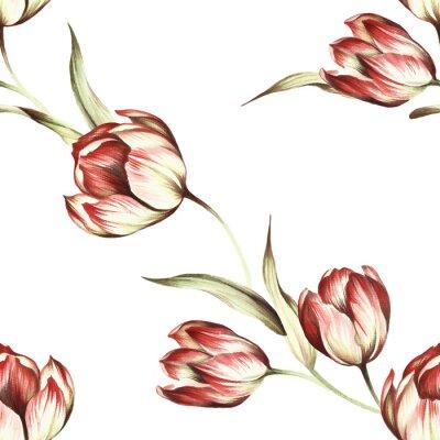 Фотообои Бесшовные с тюльпанами. Рука ничья акварель иллюстрации