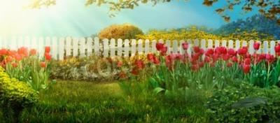 Фотообои Spring garden. Red tulips in garden Spring grass with flowers