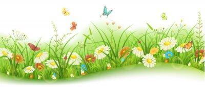 Фотообои Весна или лето цветочные баннер с зеленой травой, цветами и бабочками
