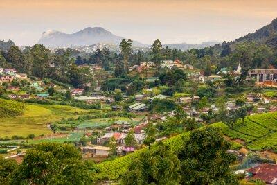 Фотообои Шри Ланка