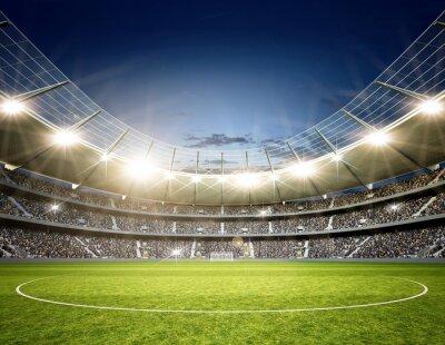 Фотообои Стадион Обычный Mittellinie