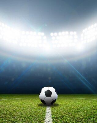Фотообои Стадион и футбольный мяч