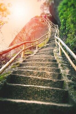 Фотообои Лестницы на горе