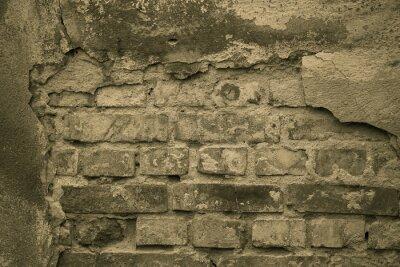 Фотообои Старый мур