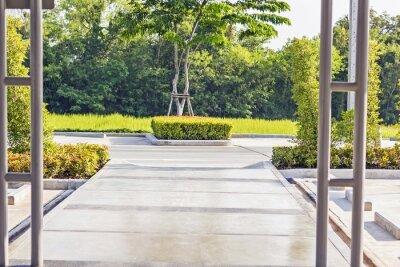 Фотообои Шагая конкретный путь в тихом зеленом саду