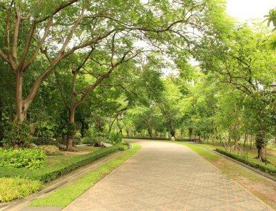 Фотообои Камень Путь в зеленый парк