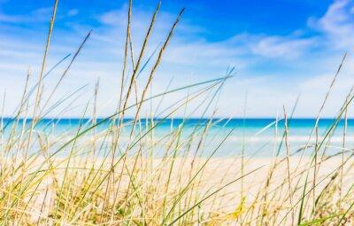 Фотообои Идиллический пляж перерыв отдых