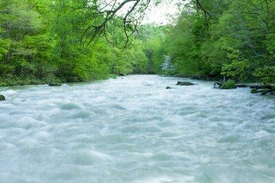 Фотообои Поток в зеленом лесу