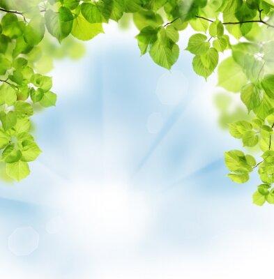 Фотообои Лето уходит на цветочном фоне зелени