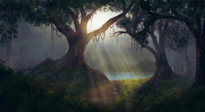 Фотообои Солнечные лучи в лесу