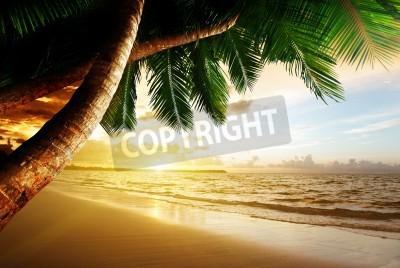 Фотообои sunrise on Caribbean beach