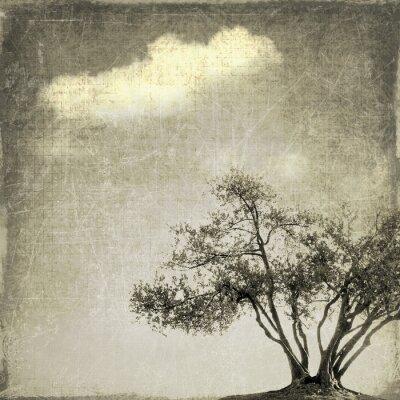 Фотообои Сюрреалистический пейзаж с одного дерева в оттенках сепии