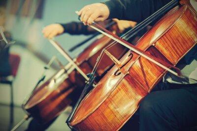 Фотообои Симфонический оркестр на сцене, руки играет на виолончели