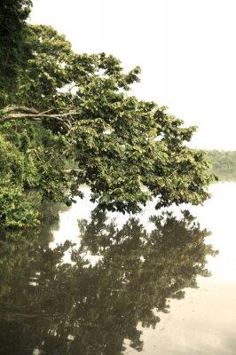 Фотообои Область Тамбопата на открытом воздухе